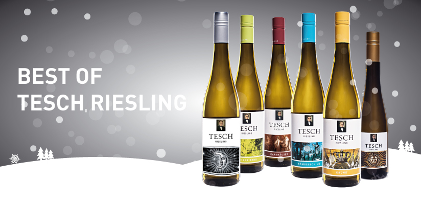 Paket | Best of Tesch Riesling